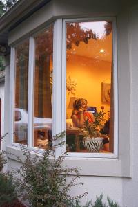 home window repair Columbus