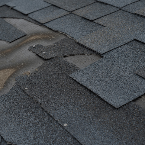 ROOFING & LEAK REPAIRS