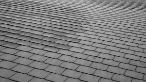 slate shingles, roof type