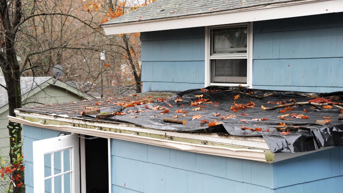 what are the signs of roof storm damage