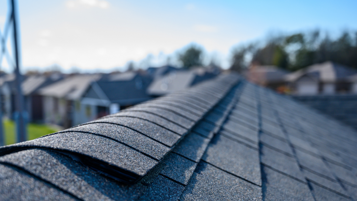 typical roof lifespan