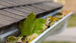 best spring roof maintenance tips