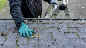 spring roof maintenance, how to inspect a roof
